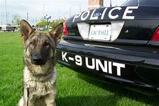 k9seiz pittsburgh pa who fatally stabbed k 9 gets