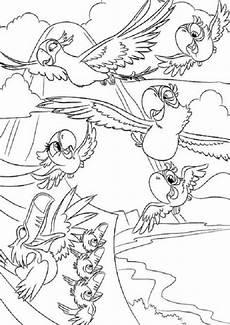 Ausmalbilder Tiere Papagei Ausmalbilder Papagei 16 Ausmalbilder Tiere