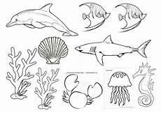 Gambar Haiwan Laut Auto Design Tech