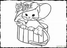 kitten drawing at getdrawings free