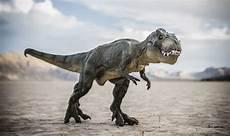 Dino Malvorlagen T Rex Jurassic Park Was Right T Rex Type Dinosaur Did Exist In