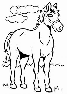 Kostenlose Malvorlagen 337 Ausmalbilder Pferde Zum Ausdruck Kostenlose