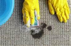 Eingetrocknete Farbe Aus Kleidung Entfernen - kugelschreiber entfernen tipps gegen kugelschreiberflecken