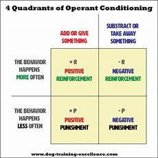 operant conditioning using positive negative dog training methods correctly