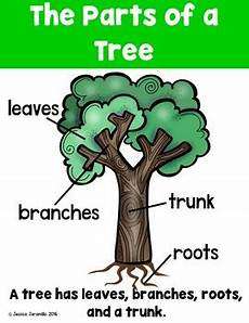 trees and weather kindergarten foss supplemental worksheets tpt