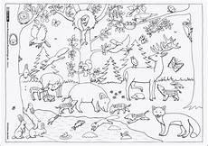 Zootiere Malvorlagen Gratis Neu Ausmalbilder Zootiere Zum Ausdrucken F 228 Rbung