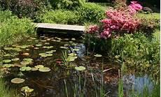 Kleine Wasserspiele Für Den Garten - biotop naturteich