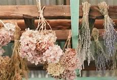 getrocknete hortensien dekorieren dried hydrangeas decorate rustic wedding venue onewed