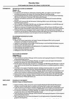 12 13 leadership resume statements loginnelkriver com