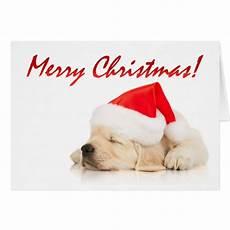 cutie pie cute santa puppy merry christmas card zazzle