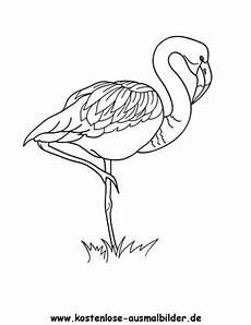 Malvorlage Flamingo Einfach Ausmalbild Flamingo 1 Zum Ausdrucken