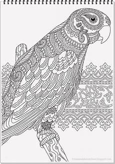 Ausmalbilder Erwachsene Papagei Fliegender Papagei Malvorlage Einzigartig Malvorlage