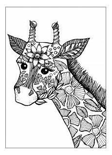 Ausmalbilder Erwachsene Giraffe Giraffen 70659 Giraffen Malbuch Fur Erwachsene