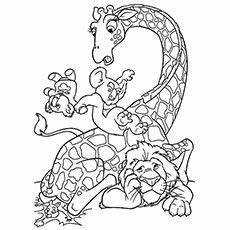 groups of animals coloring pages 17000 animal coloring pages coloring pages for coloring coloring pages