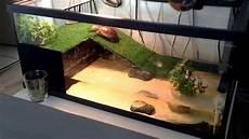tortue eau douce aquarium plongeon de tortue d eau
