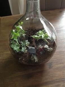 mini biosph 228 re garten in der flasche dennis