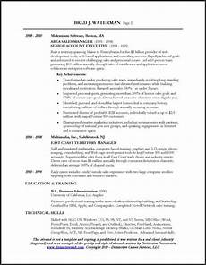 sales executive resume mt home arts