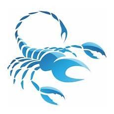 tageshoroskop skorpion mann sternzeichen skorpion