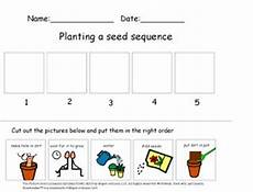 plants sequencing worksheets 13629 planting a seed cut paste sequencing activity science social studies science