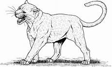 big animals coloring pages 16904 big cat coloring pages