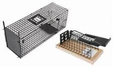 cage pi 232 ge 224 animaux groupon