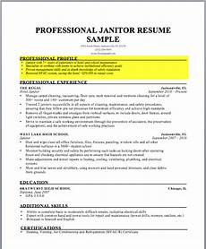 how to write a resume profile exles writing guide rg