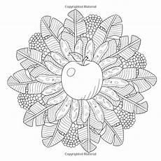 fruit mandala coloring book for adults 30 nature