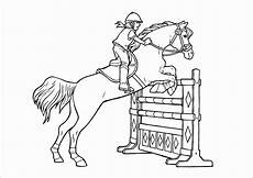 springreiten ausmalbilder pferde springen