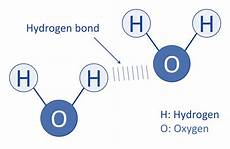 hydrogen bond diagram soap and water interaction