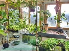 indoor vegetable garden let s invent a universe together indoor veggie garden