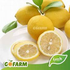 Jeruk Lemon Import Gofarm 950 1050 Gram Premium Shopee