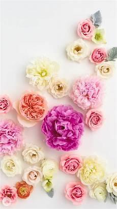 flower wallpaper for phone screen 15 favorite iphone wallpaper free downloads fondos para