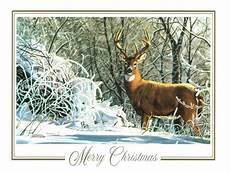 44 christmas deer wallpaper wallpapersafari