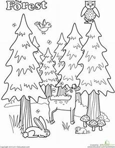nature worksheets kindergarten 15127 forest coloring page coloring nature and for