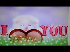 I You Picture i you cat live wallpaper