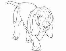 Ausmalbilder Hunde Beagle Kostenlose Malvorlage Hunde Beagle Zum Ausmalen