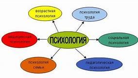 методы психологии юридического труда