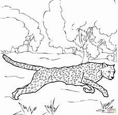 Kostenlose Malvorlage Gepard Gepard Ausmalbilder Malvorlagen Tiere Ausmalbilder