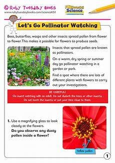 science plants ks1 worksheets 13580 ks1 science plants let s go pollinator by rubytuesdaybooks teaching resources