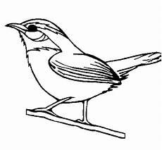 dibujo turpial dibujos para colorear del ave turpial imagui