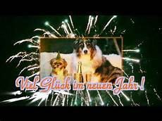 hunde silvesterw 252 nsche silvesterspr 252 che