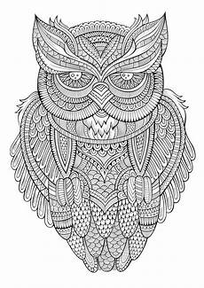 peaceful owl owls coloring pages