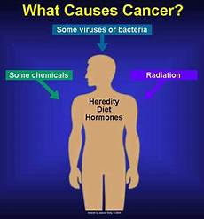 cisn what causes cancer risk factors