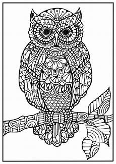 mandala coloring pages jpg 17928 m 229 larbild f 246 r vuxna klok uggla i zentangle design uggla zentangle m 229 larb 246 cker