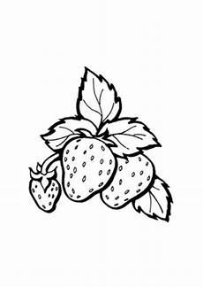 Ausmalbilder Mit Obst Ausmalbild Erdbeeren Mit Stiel Kostenlos Ausdrucken