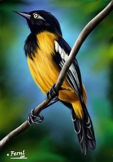 turpial en caricatura ave nacional el turpial venezuela caras de animales pintura de pajaros
