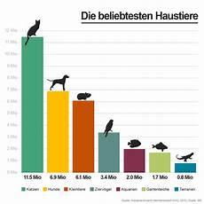 die beliebtesten haustiere tiere daheim die beliebtesten haustiere in deutschland