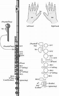 Flute Key Diagram by Flute For Dummies Sheet Dummies