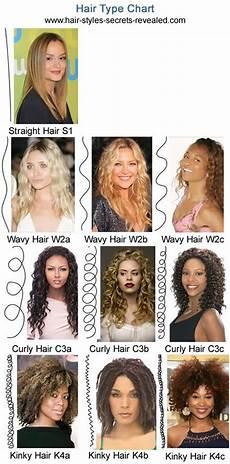 Hair Type Curls