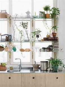 Kitchen Bay Window Plants by Bohemian Kitchens Kitchen Window Plant Shelves Bay Window